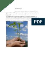 Defina el concepto de ecología.docx