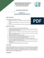 sonda foley.pdf