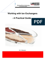 ION - CCP - LAB INSTRUCTIONS - Dr. NEUMANN - 2008_07_10.pdf