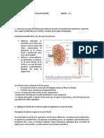 Preguntas de prerrequisitonúmero 5.docx