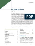 2010 La sesión de masaje.pdf