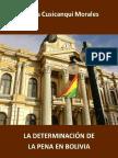 Determinacion de La Penaxxx