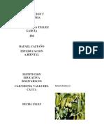 Taxonomia Principales Árboles de Caicedonia