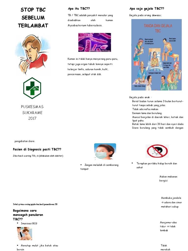 Leaflet Tb Paru 2