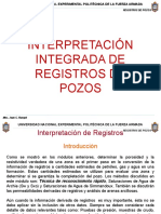 Interpretacion Integrada de Registros de Pozos