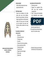 Leaflet ASMA 2