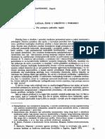 08 Culinovic Konstantinovic Analiza Polozaja Zene u Drustvu i Porodici