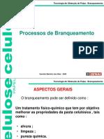 Branqueamento- 2008