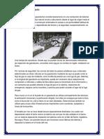 Estudio de Mercado e Ingenieria de Proyecto
