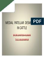 Medial Patellar Desmotomy in Cattle by Santh