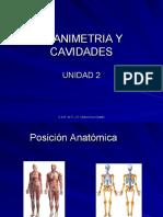 Planimetria y Cavidades En Odontología