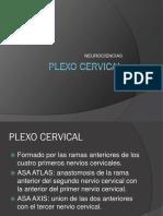 Plexo cervical.ppt