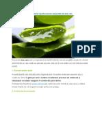 10 Utilizări Spectaculoase Ale Plantei de Aloe Vera