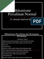 183307419 Mekanisme Persalinan Normal Ppt