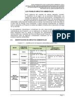 dentificación y Evaluación de Impactos Ambientales_Ica