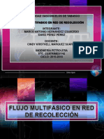 Fmt Red Recoleccion Eq#8