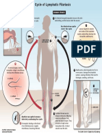lymphatic-filariasis-life-cycle.pdf