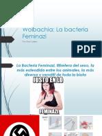 Wolbachia.pptx