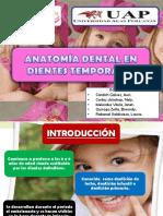 anatomadentalendientestemporales.pptx