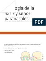 Fisiología de La Nariz y Senos Paranasales