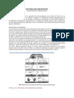 FARMACOTERAPIA (1).pdf