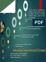 ANTECEDENTES PNC