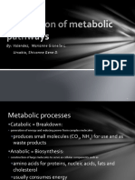 Major metabolic pathways.pptx
