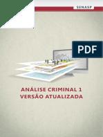 Analise Criminal.pdf