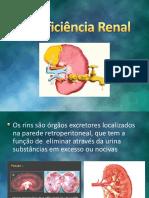 insuficienciarenal-121115081446-phpapp02
