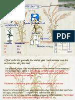 2017 Agroquímica