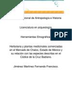 Herbolaria y Plantas Medicinales en El Mercado de Chalco, Estado de México.
