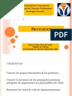 2017.M.v. Protozoa 2da. Parte (2)