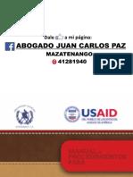 Manual Procedimientos p%2F Delitos Menos Graves. Abogado Juan Carlos Paz PDF