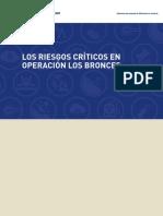 Libro Controles Criticos LB  5.pdf