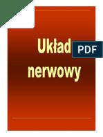 Anatomia Ukladu Nerwowego!!!