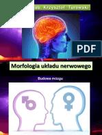 Mofologia-ukadu-nerwowego.pdf