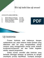 108856_presentasi Mikro Fixxx