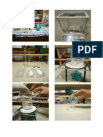 p5 biokimia