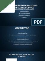 Universidad Nacional de Agricultura-1