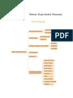 Reproduksi Pada manusia.pdf