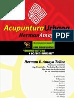 1.Conferencia Acupuntura Urbana - UNSA