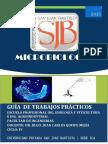 Guia Microbiologia 2015 UPSJB
