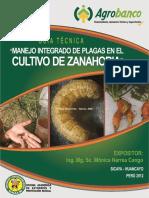 041 a Zanahoria