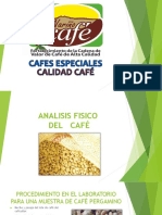 Analisi Fisico Del Cafe