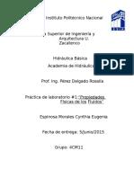 Practica_1_hidraulica (1)