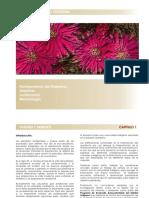 capi_1.pdf