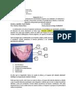 Asignación 1 PRP Franli Ceballos