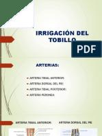 Irrigación Del Tobillo