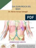 Patologia Quirurgica Del Bazo