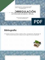Autorregulación_Manuel Emilio Salazar Morales